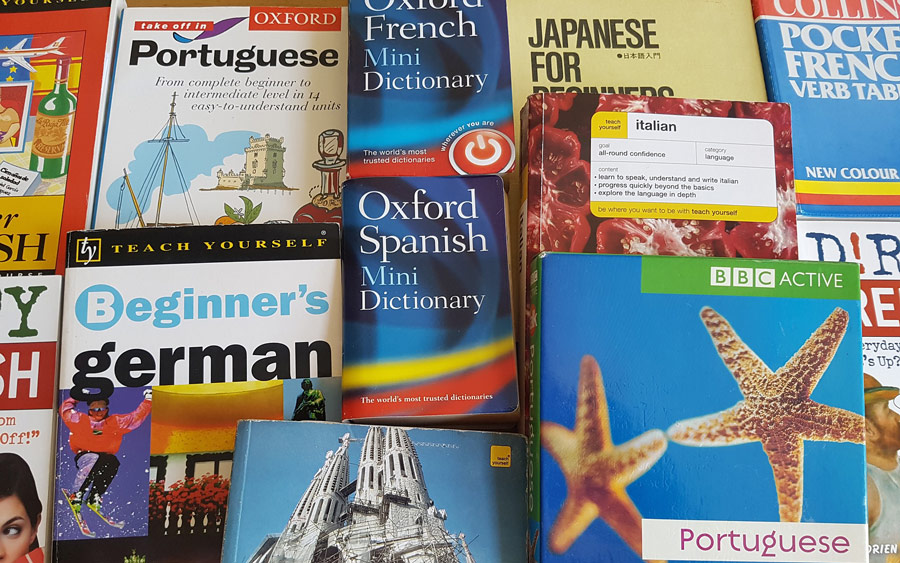 language dictionaries and translation books