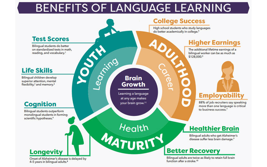 infographic on the benefits of language learning